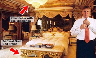 Trump gold bed